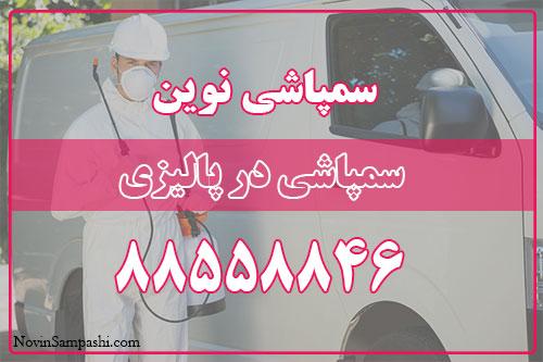 سمپاشی در پالیزی